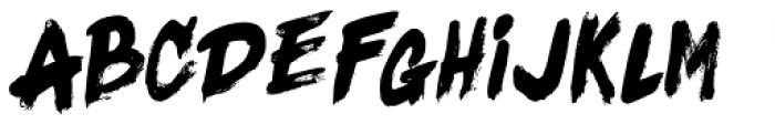 Black Fighter Sans Font LOWERCASE