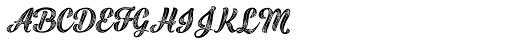 Black Script Printed Inline Bold Font UPPERCASE
