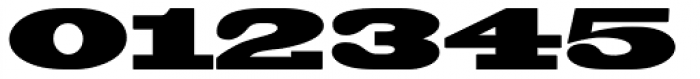 Blackoak Font OTHER CHARS