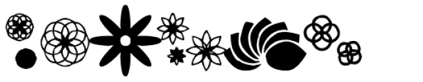 Bloomies Font LOWERCASE