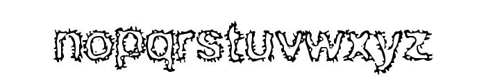 BN Kuktus Font LOWERCASE