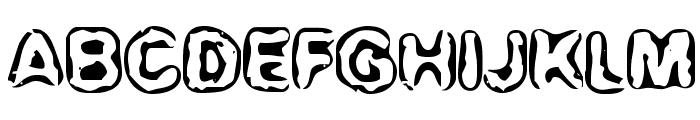 BN-Maxi Font UPPERCASE