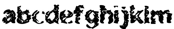 BN-Zooner Font LOWERCASE