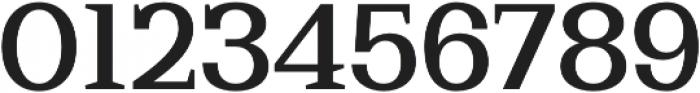 Bodrum Slab 15 Medium otf (500) Font OTHER CHARS