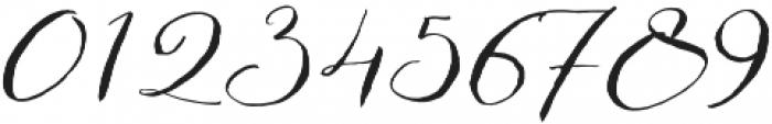Bougenville Regular otf (400) Font OTHER CHARS