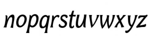 Bonobo Italic Font LOWERCASE