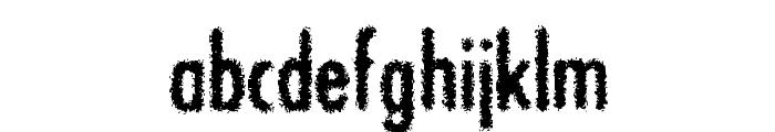 BON ViVEUR Font LOWERCASE
