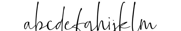 Bollivia Rosilla Script Font LOWERCASE