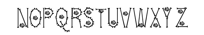 Bones  Roses Thin Font UPPERCASE