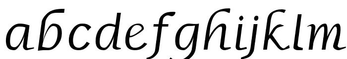 Borzoi BoldItalic Font LOWERCASE