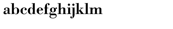 Bodoni Antiqua Demi Bold Font LOWERCASE