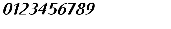 Bodoni Sans Text Bold Italic Font OTHER CHARS