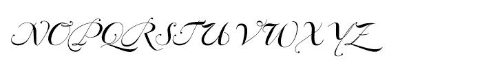 Bodonian Script 4 Font UPPERCASE
