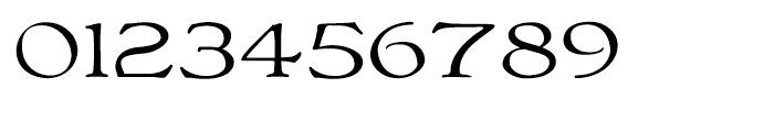 Bonning Wide Regular Font OTHER CHARS