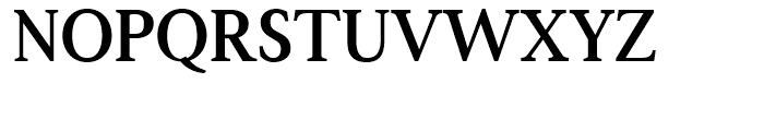 Boutros Latin Serif Bold Font UPPERCASE
