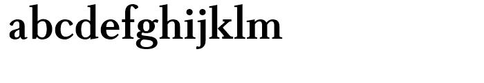 Boutros Latin Serif Bold Font LOWERCASE