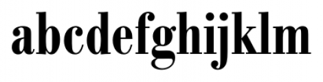 Bodoni Recut FS DemiBold Condensed Font LOWERCASE