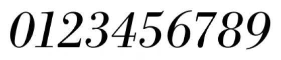 Bodoni Recut FS Italic Font OTHER CHARS