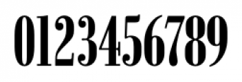 Bodoni Recut FS Medium Compressed Caps Font OTHER CHARS