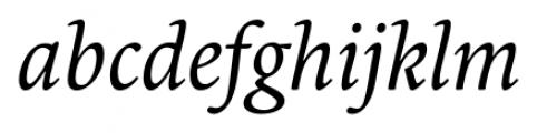 Borges Blanca Italic Font LOWERCASE