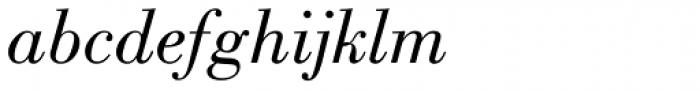 Bodoni Book Italic Font LOWERCASE