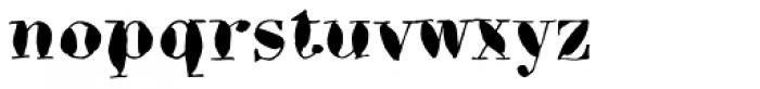 Bodoni Brush Std Font LOWERCASE