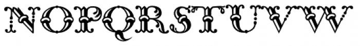 Bodoni Classic Bambus Initials Font UPPERCASE