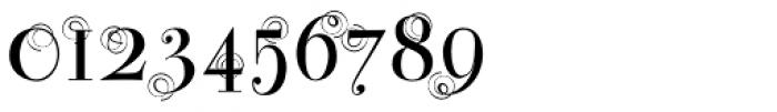 Bodoni Classic Swirls Roman Font OTHER CHARS