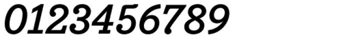 Bodoni Egyptian Pro Bold Italic Font OTHER CHARS