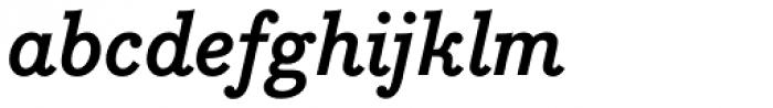 Bodoni Egyptian Pro Bold Italic Font LOWERCASE