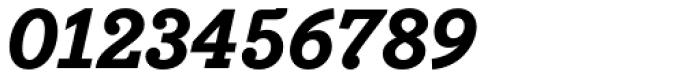 Bodoni Egyptian Pro ExtraBold Italic Font OTHER CHARS