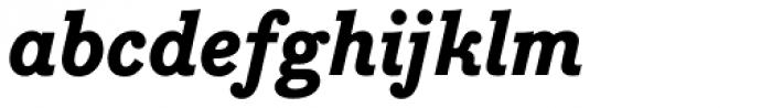 Bodoni Egyptian Pro ExtraBold Italic Font LOWERCASE