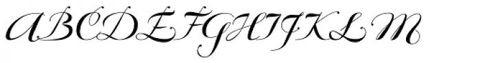 Bodonian Script 6 Font UPPERCASE