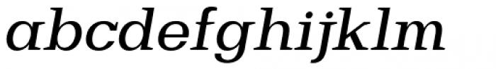 Bodrum Slab 15 Medium Italic Font LOWERCASE