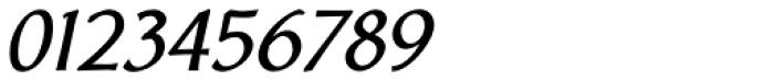 Body Copy Sans Pro Heavy Italic Font OTHER CHARS