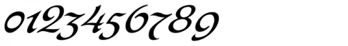Bogdan Siczowy Cursive Font OTHER CHARS