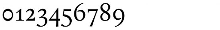 Bona Nova Regular Font OTHER CHARS