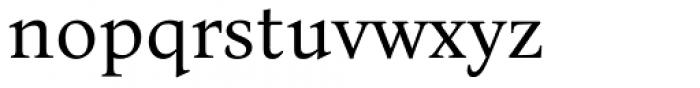 Bona Nova Regular Font LOWERCASE