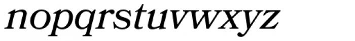 Bookmania Italic Font LOWERCASE