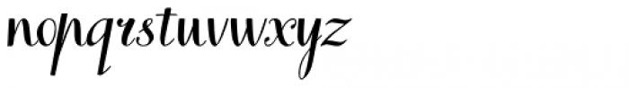 Books Script Font LOWERCASE