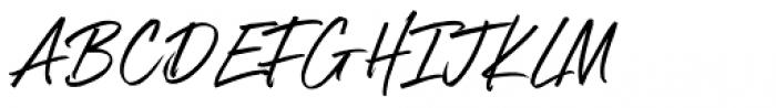 Boston Skyline Clean Alt Font UPPERCASE