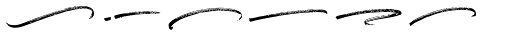 Boston Skyline Swashes Rough Font UPPERCASE