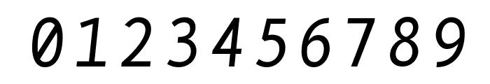 BPmono Italic Font OTHER CHARS