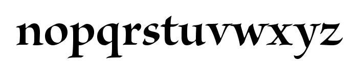 BriosoPro-BoldDisp Font LOWERCASE