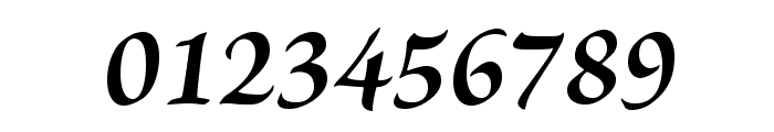 BriosoPro-BoldIt Font OTHER CHARS