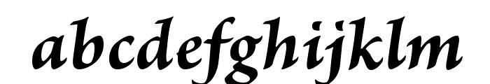 BriosoPro-BoldItCapt Font LOWERCASE