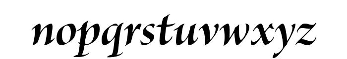 BriosoPro-BoldItDisp Font LOWERCASE