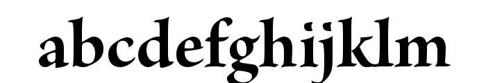 BriosoPro-BoldSubh Font LOWERCASE