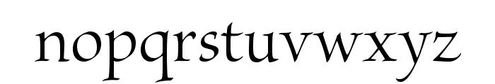 BriosoPro-Disp Font LOWERCASE
