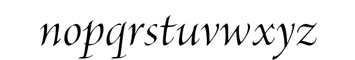 BriosoPro-ItDisp Font LOWERCASE